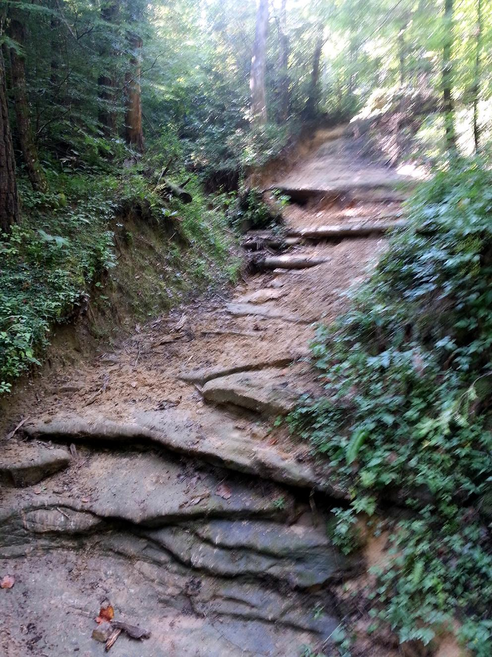Big South Fork Horse Trails