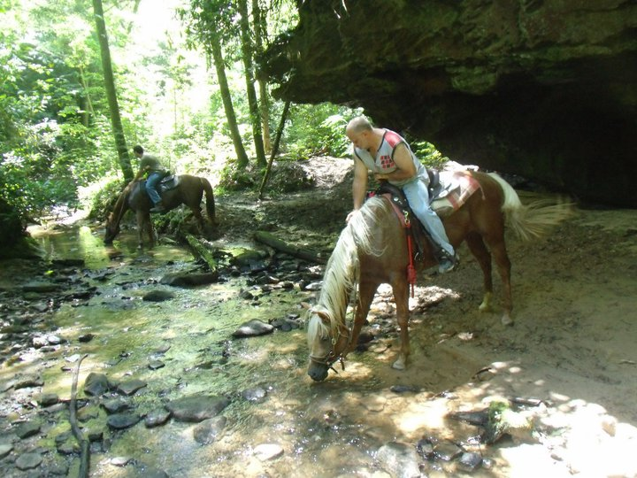 Big South Fork Horseback Riding Trails